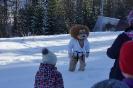 zimowy obóz judo-2